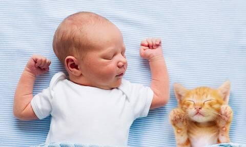 Μωράκι αντιγράφει τη γάτα του – Το βίντεο στο TikTok που κάνει θραύση