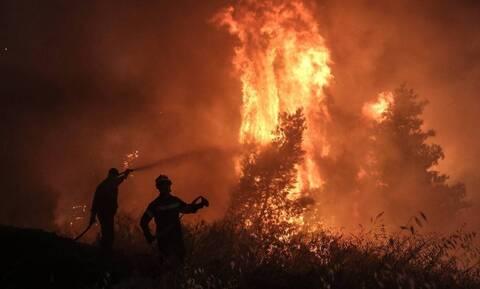 Πάτρα: Σε ύφεση και χωρίς ενεργό μέτωπο οι φωτιές στον Άραξο και στην Άνω Ψωφίδα των Καλαβρύτων