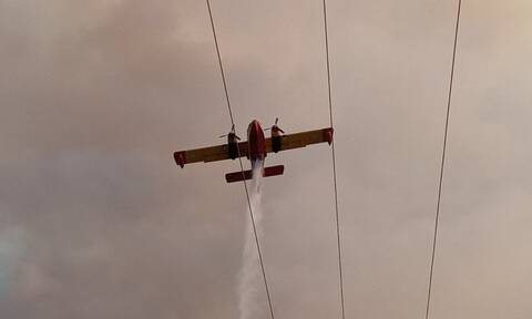 Φωτιά στην Αχαΐα: Επιχειρούν ισχυρές δυνάμεις της Πυροσβεστικής