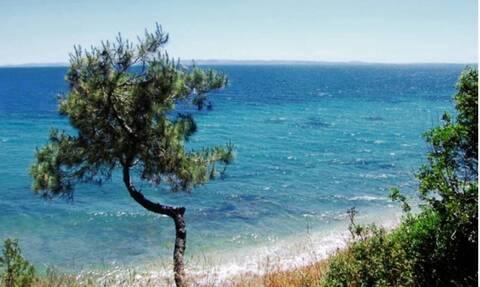 Министр туризма Греции посетит крупнейшую туристическую выставку Франции