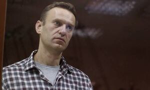 США и еще 44 страны передали России в ОЗХО вопросы по делу Навального