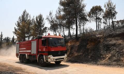 Έρευνα της Πυροσβεστικής για ύποπτες πυρκαγιές στον Μαραθώνα