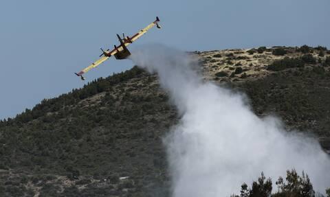 Φωτιά στη Ναυπακτία: Επί ποδός η Πυροσβεστική