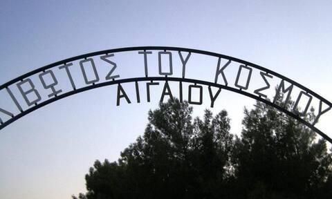 Χίος: Γεύμα αγάπης στο παιδικό χωριό της «Κιβωτού του Κόσμου στο Αιγαίο»