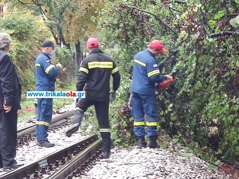 Οι άνδρες της Πυροσβεστικής απομακρύνουν το δένδρο