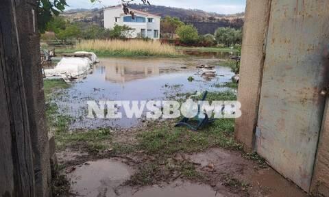Το Newsbomb.gr δίπλα στους δοκιμαζόμενους Ευβοιώτες - Αποστολή στις πληγείσες περιοχές