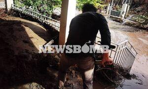 Эвбея, ставшая летом эпицентром лесных пожаров, пострадала от наводнения