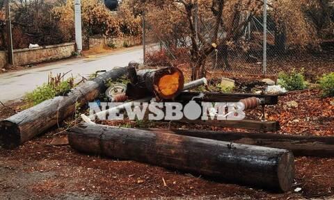 Το Newsbomb.gr στη Βαρυμπόμπη: Κραυγή αγωνίας από τους κατοίκους - «Έρχονται βροχές, μας ξέχασαν»