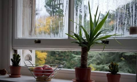 Καθαρή ατμόσφαιρα σε κλειστό σπίτι: Ο σωστός αερισμός κατά τη διάρκεια του χειμώνα