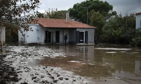 Ρεπορτάζ Newsbomb.gr: Σε συναγερμό η Βόρεια Εύβοια για τον «Μπάλλο» - Σχέδιο για επικίνδυνες ζώνες
