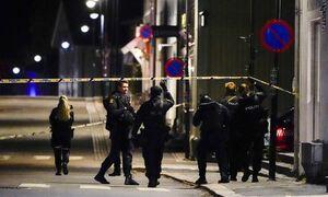 Νορβηγία: Σκόρπισε τον θάνατο με ένα τόξο - Φωτογραφία του φερόμενου δράστη