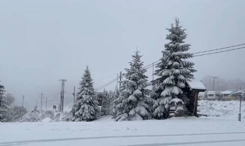 Κακοκαιρία «Μπάλλος»: Xιόνισε ακόμα και έξω από τη Φλώρινα – Άσπρισαν τα πάντα (vid)