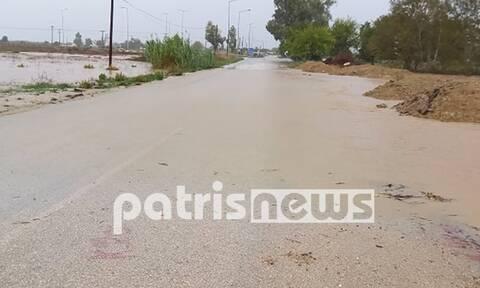 Σφοδρό πέρασμα της κακοκαιρίας από την Ηλεία: Πνίγηκαν ζώα - Πλημμύρισαν σπίτια και αποθήκες