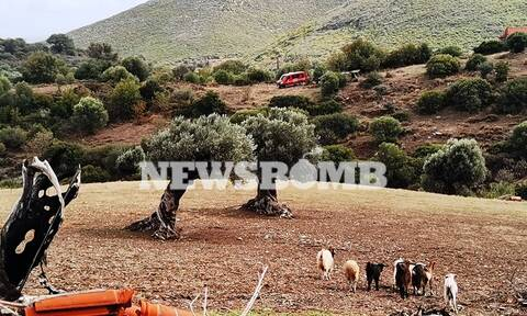 Εύβοια: Εδώ βρέθηκε νεκρός ο 69χρονος βοσκός από τα Μεσοχώρια (pics)