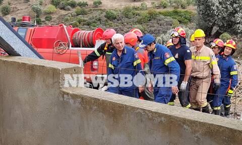 Εύβοια: Ο άτυχος βοσκός προσπαθούσε να φτιάξει τη ζωή του – Πώς τον βρήκαν οι πυροσβέστες