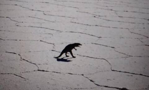 Viral: Χρήστες του Google Maps λένε πως εντόπισαν δεινόσαυρο στην έρημο της Χιλής!