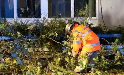 Γερμανία: Τραυματίες, πτώσεις δέντρων και χιλιάδες σπίτια χωρίς ρεύμα λόγω του τυφώνα «Ιγνάτιου»