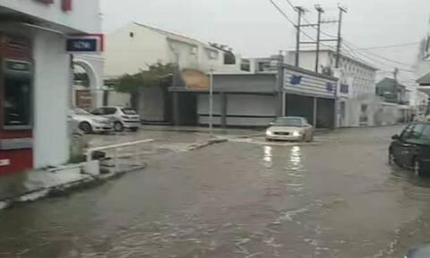 Πλημμύρες στην Κέρκυρα: «Ποτάμια» οι δρόμοι, νερά σε σπίτια και επιχειρήσεις από την κακοκαιρία