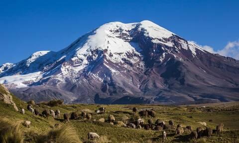 Τραγωδία στον Ισημερινό στα 6.100 μέτρα: Τέσσερις νεκροί από χιονοστιβάδα σε χιονισμένο ηφαίστειο