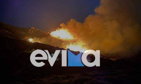 Φωτιά στο Μαρμάρι Ευβοίας - Κοντά σε σπίτια οι φλόγες