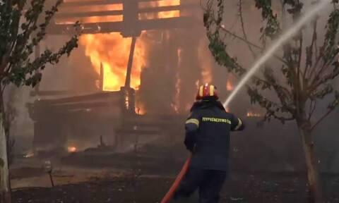 GNTM: Η εσπευσμένη μεταφορά των μοντέλων λόγω της φωτιάς στις Αφίδνες (video)
