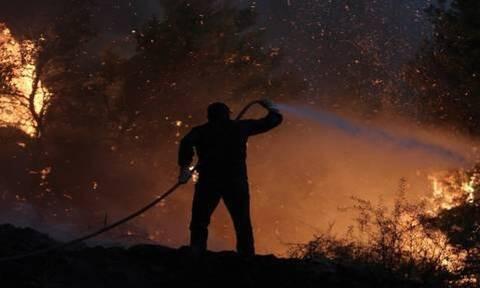 Θεσσαλονίκη: Μεγάλη πυρκαγιά σε χωματερή στα Διαβατά