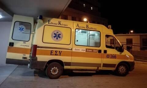 Αιτωλοακαρνανία: Σκύλος επιτέθηκε σε δύο γυναίκες- Στο νοσοκομείο με σοβαρά τραύματα μία ηλικιωμένη